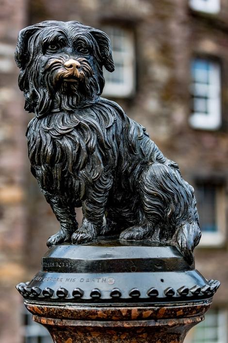 Greyfriars Bobby, Skye Terrier, History
